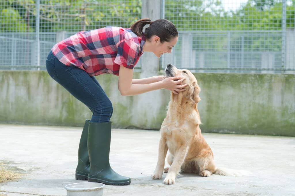 Lady with rescued dog thanks to charity copywriter
